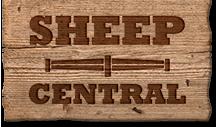 Sheep-Central