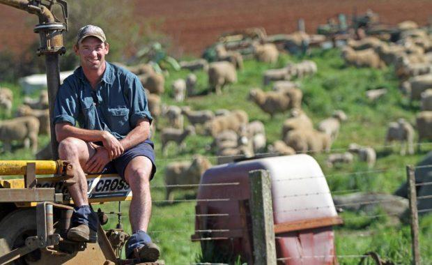 Sassafras farmer Matthew Young tests online knowledge exchange